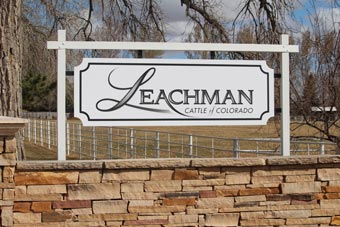 Leachman Cattle of Colorado