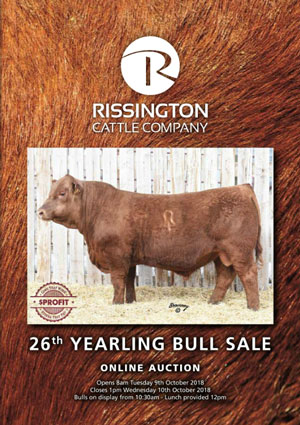 26th Spring Yearling Bull Sale